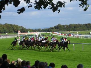 There is racing from Haydock on Saturday